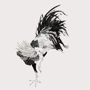 marie-rouillon-animals-featured